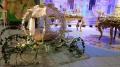 aluguel-carruagem-princesa-disney-eventos-festas-de-debutante-casamento-rio-de-janeiro-P2